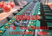 XGJ-SZZ-凯祥石榴分选机-水果分级机-高品质分选机