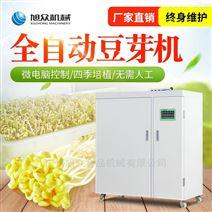 广州旭众箱式培育豆类豆芽机工厂直销