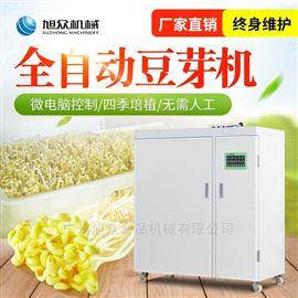 XZ60-A广州旭众箱式培育豆类豆芽机工厂直销
