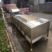 净菜加工设备厂家不锈钢芦笋全自动清洗机