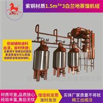 醇香白蘭地蒸餾釀酒設備選源頭工廠鑫華輕工
