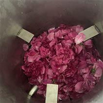 上海矩源玫瑰精油纯露提取设备