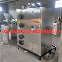 环保锅炉燃气蒸汽发生器