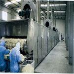 DW椰蓉带式干燥机