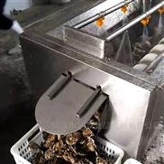 高壓噴淋毛輥清洗機 土豆去皮機