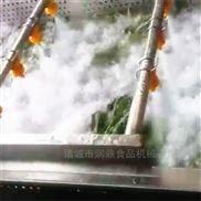 氣泡清洗機 洗菜機