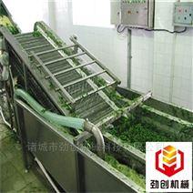 果蔬气泡清洗机