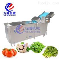 果蔬清洗機 全自動高壓噴淋氣泡式洗菜機