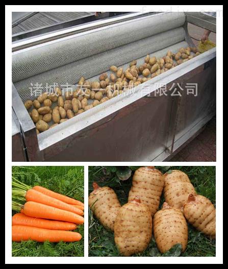 小型净菜加工设备毛辊清洗机