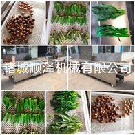 SZ3000厂家热销多功能高效鲜笋酸菜漂烫机