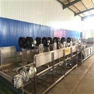 SZ4000环保型蔬菜清洗风干设备流水线