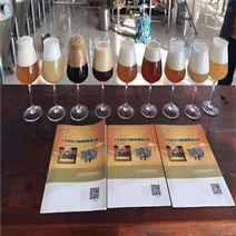 山东精酿啤酒设备 引进德国工艺