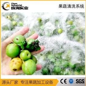 厂家定制 全自动洋葱气泡清洗机 果蔬清洗