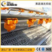 厂家定制 果蔬加工专用 连续高压喷淋清洗机