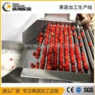 厂家定制 果汁盒装饮料生产线设备 加工设备
