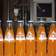 中小型玻璃瓶碳酸饮料生产线设备