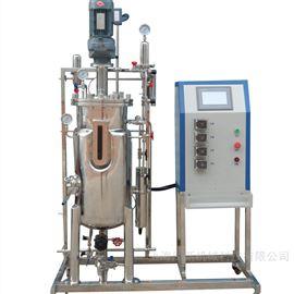 多功能发酵罐小型不锈钢实验室发酵系统