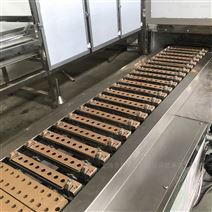 全自動夾芯軟糖澆注生產線 軟糖成型設備