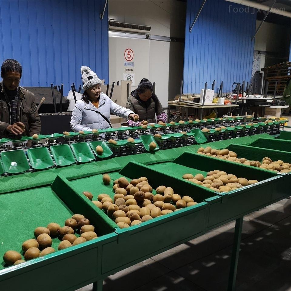 陕西猕猴桃选果机 给水果分等级的机器厂家