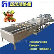 大型不锈钢蔬菜清洗流水线果蔬清洗机