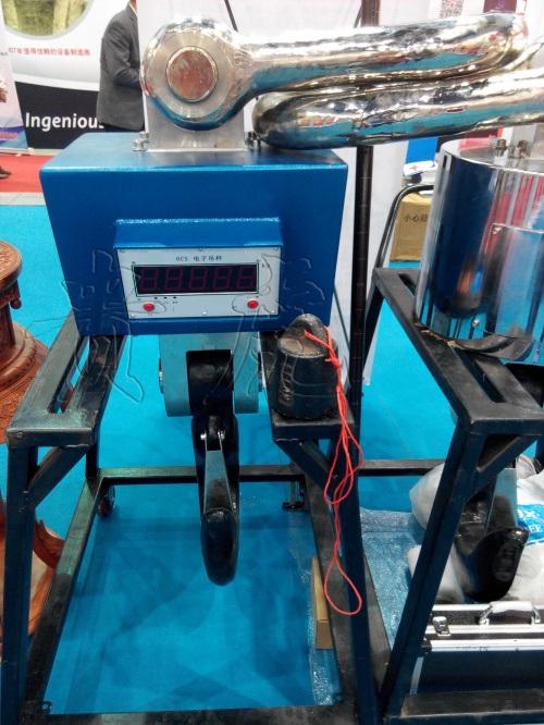 30吨电子吊磅,30吨电子吊磅价格