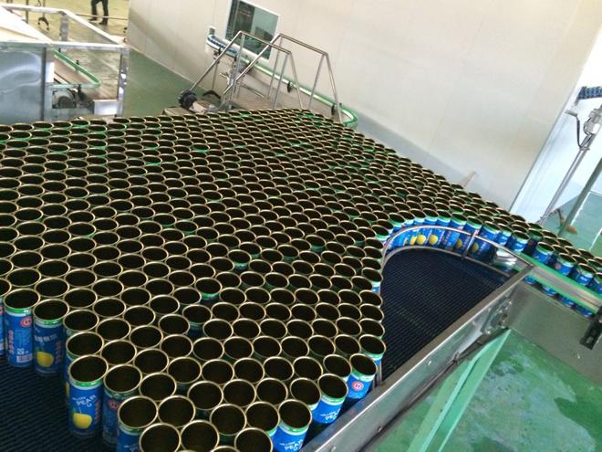 新款:核桃露核桃生产线饮料露加工设备-科信饮舞台道具树的v核桃图片