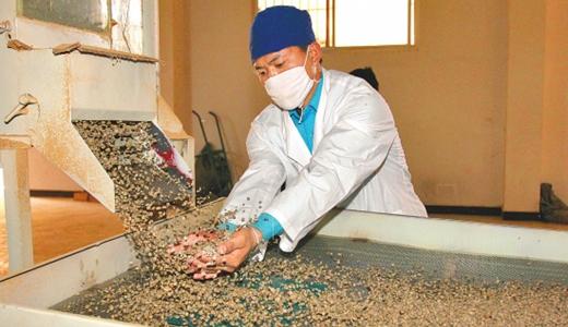 黑龙江产业联盟与成立高中扭曲_果蔬咖啡,交际筛选心里机械图片