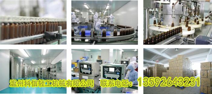 全自动沙棘酵素生产设备价格|成套沙棘酵素制作工艺