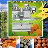 甘肃月饼机 陕西小型月饼机 西藏多功能月饼机
