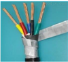DJYVP22-7*2*1.0钢带铠装计算机电缆
